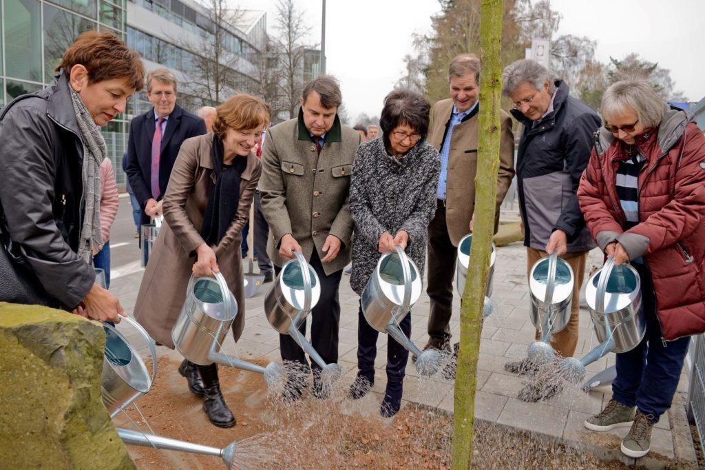 Eichenpflanzung auf dem Rathausplatz