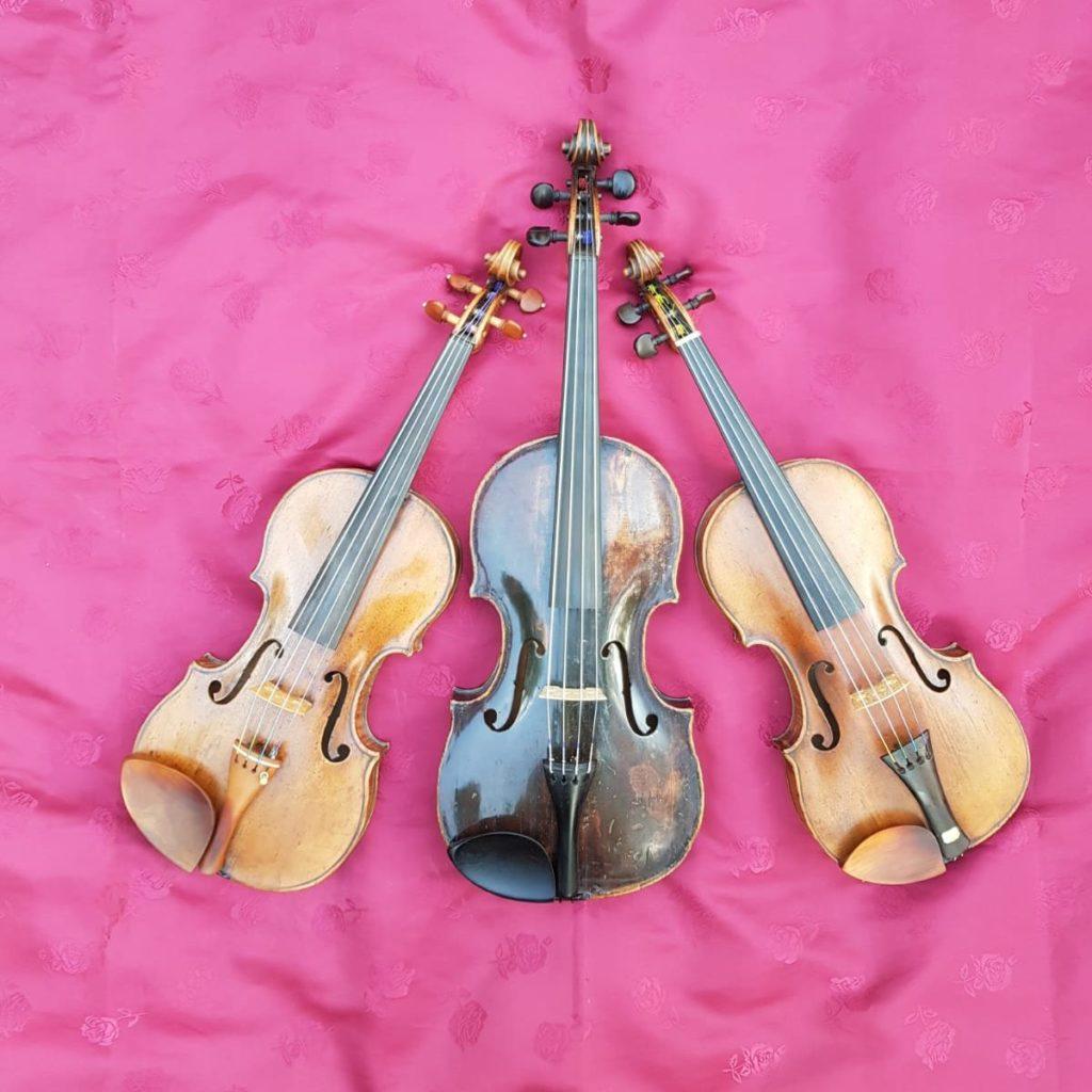 Streichtrio - Serenade ensemble Amphion Klassik Konzert