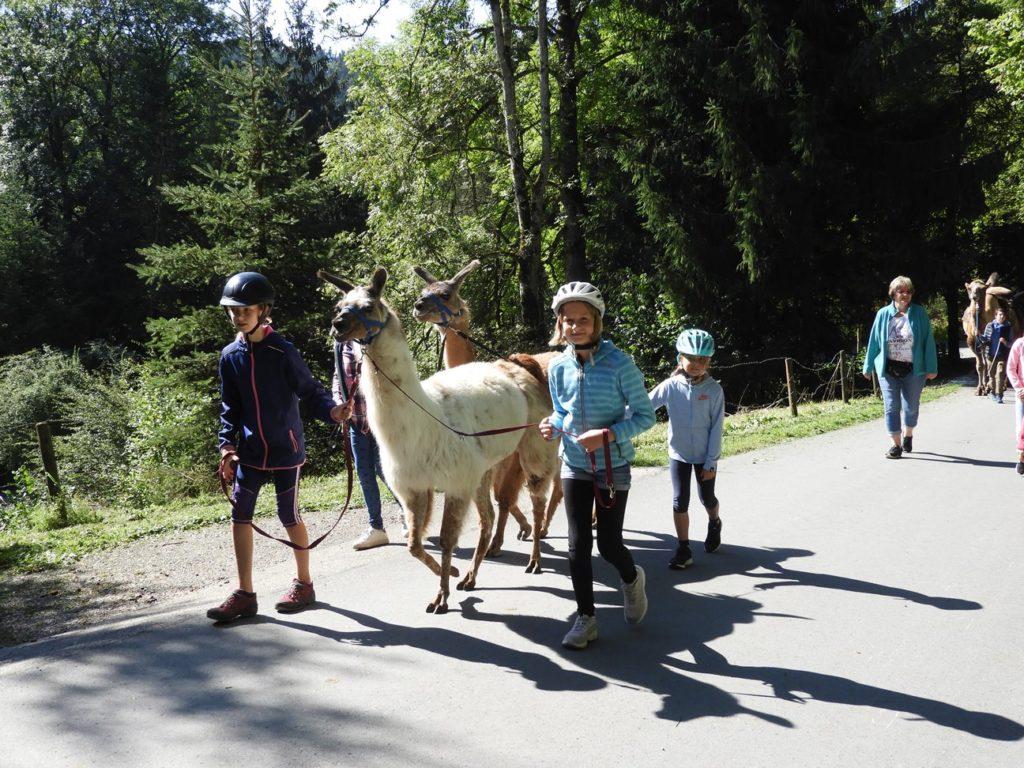 Kinderferienprogramm 2019, Auflug Kamelhof Lamatrekking