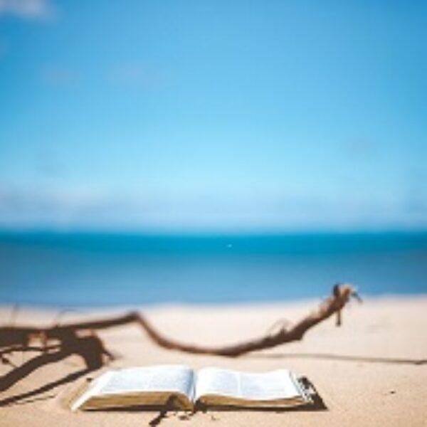 Buchausstellung für den Sommer-Urlaub